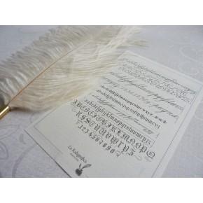 Strutsfjäderkalligrafipenna - Vit