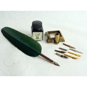 Kalligrafipenna - grön fjäder, bläck och hållare
