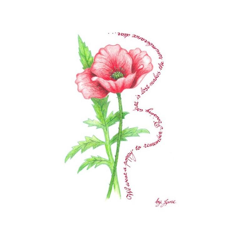 Recordo Poppy