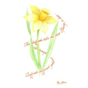 Frühlings-Narzissen-