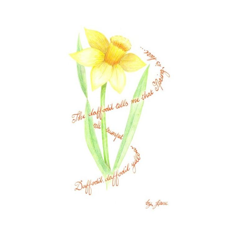 Forår påskelilje