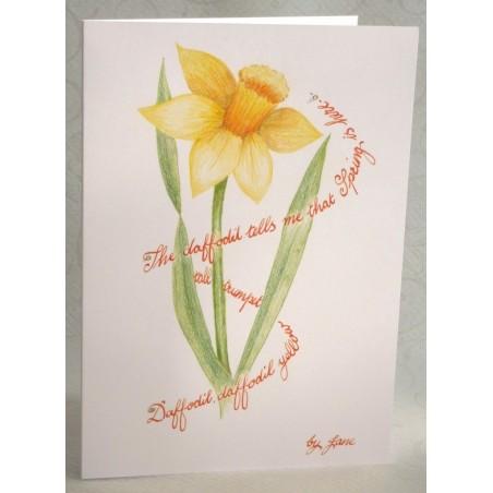Primavera Narciso
