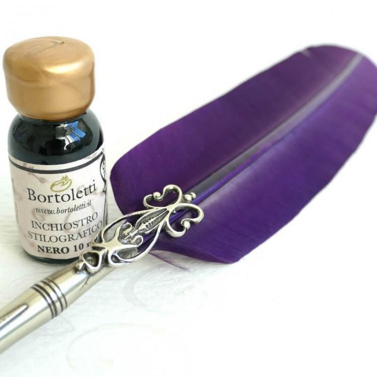 Piuma d'oca penna, due punte e inchiostro.