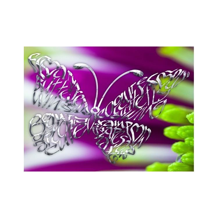 Cromo Farfalla su un fiore viola